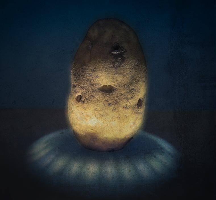 ziemniak super star