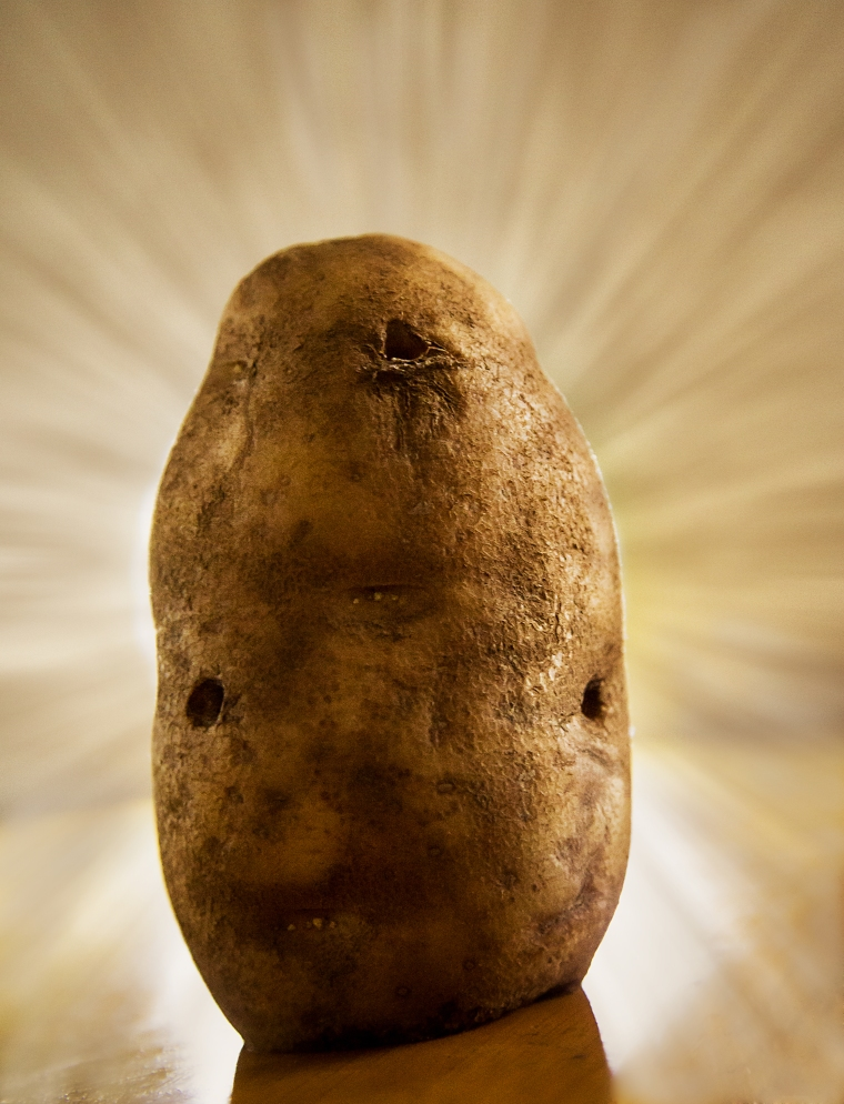 ziemniak the star