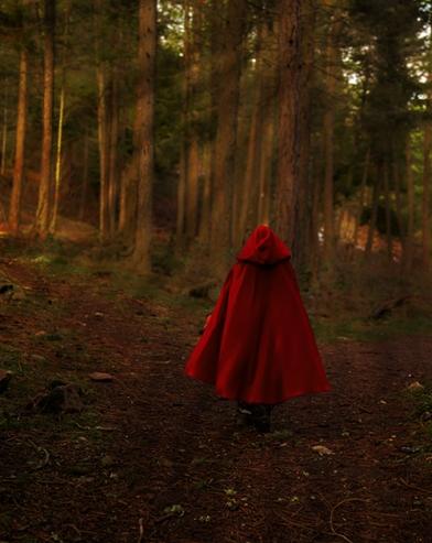 czerwony kapturek w lesie mniejsze